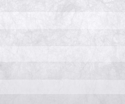 Plissee Loretta weiß lichtdurchlässig/blickdicht/Sichtschutz Dekoration Vliesstruktur PG1