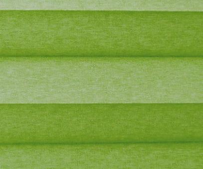 Plissee Donata grün Verdunkelung, blickdicht/Sonnenschutz/Hitzeschutz, Rückseite Perlmutt, PG3