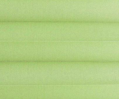 Plissee Loretta grün lichtdurchlässig blickdicht, Sichtschutz/Sonnenschutz, PG1