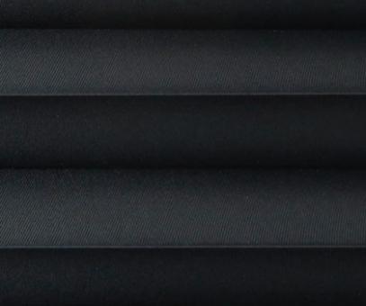 Plissee Loretta schwarz licht- durchlässig blickdicht, Sicht- schutz/Sonnenschutz, PG1