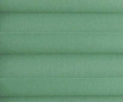 Plissee Loretta grün lichtdurchlässig blickdicht  Sichtschutz/Sonnenschutz. PG1