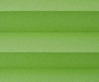 Plissee Angela grün lichtdurchlässig blickdicht/Sichtschutz/Sonnenschutz. Kreppstruktur, PG0