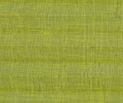Plissee Vanessa grün, transparente Dekoration Fenster, Leinen Struktur, PG4