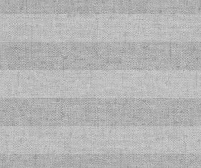 Plissee Vanessa grau Verdunkelung, blickdicht/Sonnenschutz/Hitzeschutz, Rückseite Perlmutt, PG4