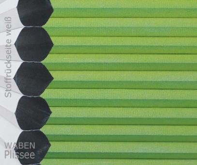 Wabenplissee Vanessa grün Verdunkelung, Wärme-/Hitzeschutz, isolierend, PG4